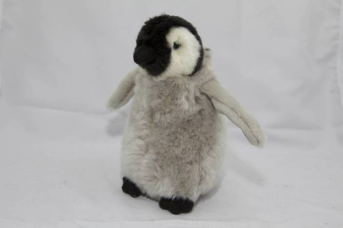 Pinguin-Baby - Frontansicht