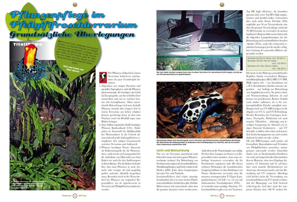 REPTILIA 123, Bepflanzung von Pfeilgiftfrosch-Terrarien