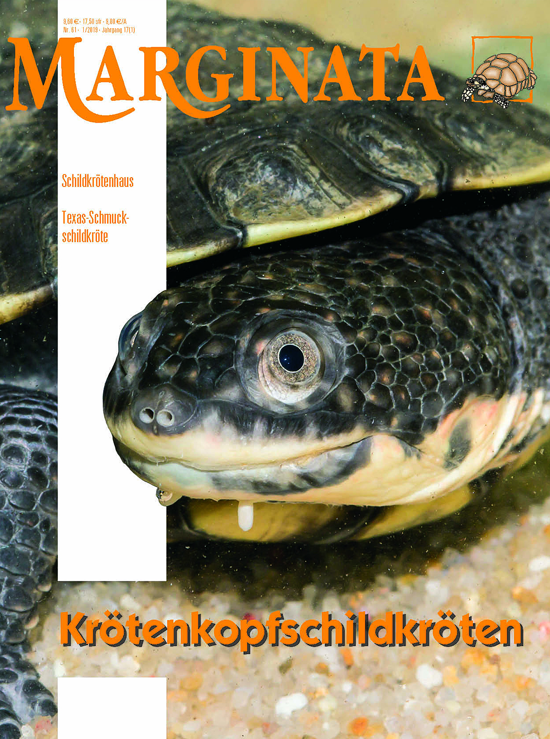 m61_cover