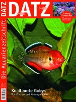 Datz - April 2015, Knallbunte Gobys