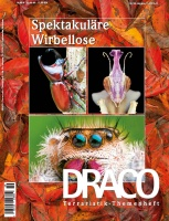 draco_59-cover