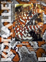 koralle_115-cover_web