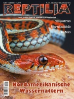 rep_141_cover-klein